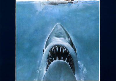 Sharks,