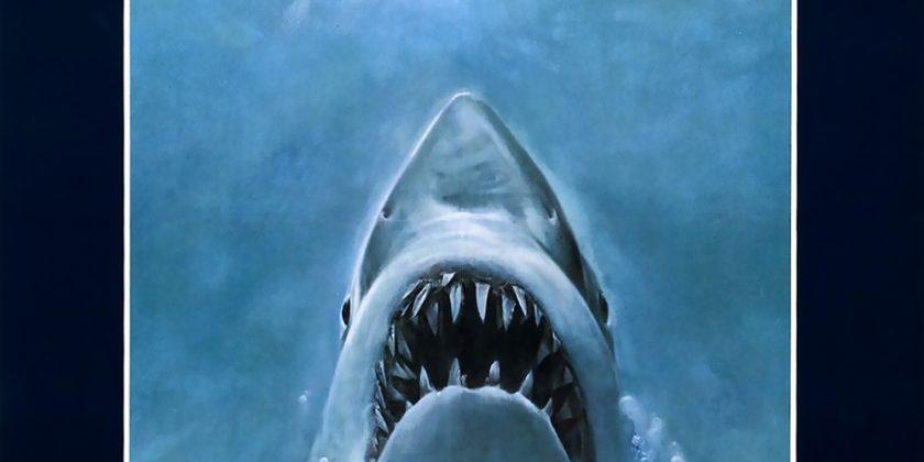 "Sharks, Bora Bora, & Engaging M&A Markets III: ""Jaws"" vs. Mistaken Identity"